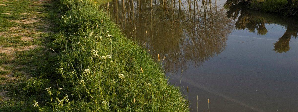 Nature reserve Avelingen